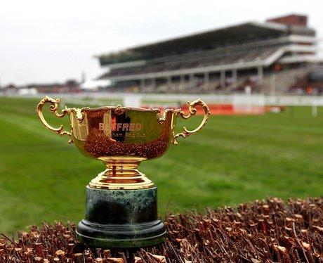 cheltenham races gold cup