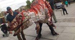 Norwich Dino