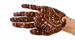 Typical henna design