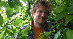 Henrik Dahle tree Southampton