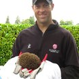 Marcus Trescothick and hedgehog