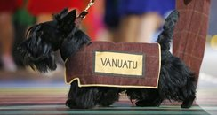 Vanuatu dog Glasgow 2014