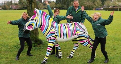 Marwell zebra trail
