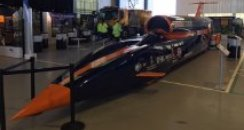 Bloodhound on display in Cornwall