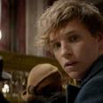 Eddie Redmayne in Fantastic Beasts And Where To Fi