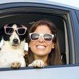 Summer Dog Sunglasses