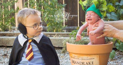 Harry Potter family portrait