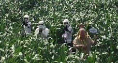 Star Wars theme at Skylark Maize Maze, Wimblington